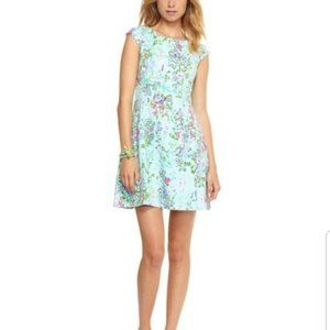 Holy Grail Lilly Pulitzer Brielle Dress Size Small